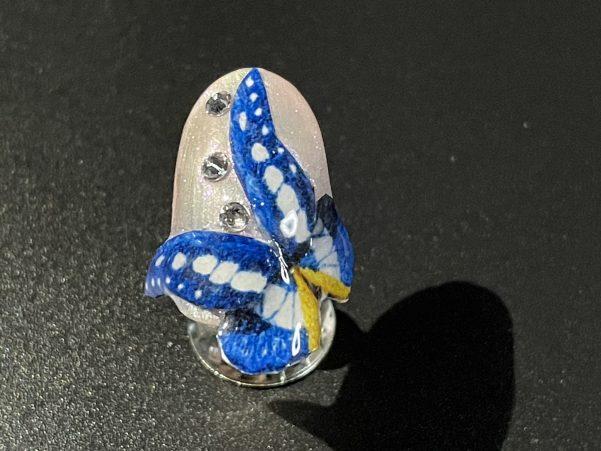 ヘレナモルフォ蝶爪横