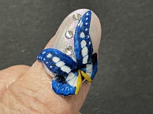ヘレナモルフォ蝶爪