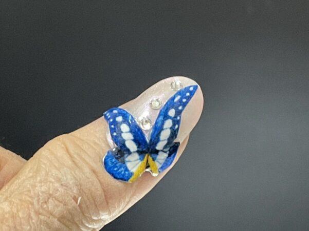 ヘレナモルフォ蝶つけ爪
